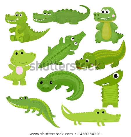 Establecer cocodrilo blanco ilustración diseno verde Foto stock © colematt