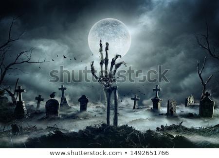 hátborzongató · halloween · csontváz · csontok · terv · háttér - stock fotó © mythja