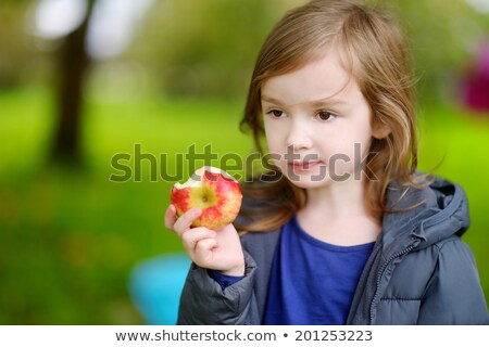 Cute little preschooler girl eating an apple on beautiful autumn day Stock photo © Lopolo