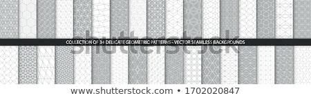 Preto vetor coleção branco Foto stock © blumer1979