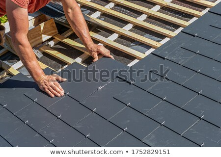 Old roofing slate. Stock photo © Leonardi