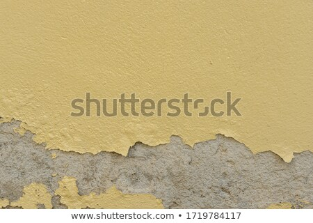 torn old brown paper with pattern from humidity                  Stock photo © Melvin07