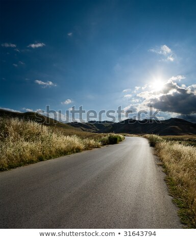 Stock photo: Country Road in Backlight.