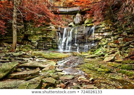 Jesienią West Virginia spadek powolny migawka prędkości Zdjęcia stock © backyardproductions