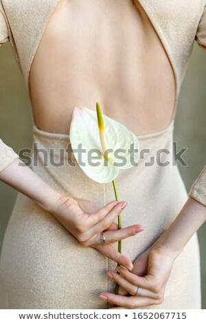 bela · mulher · cabelos · cacheados · isolado · bege · retrato · sensual - foto stock © anna_om