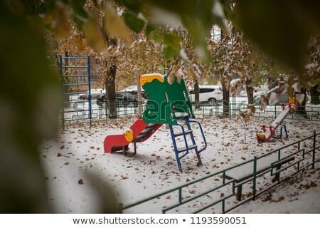 New bright roller coaster in winter park Stock photo © Elmiko