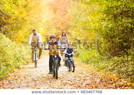 Adam bisiklet güneşli orman dağ Stok fotoğraf © pekour