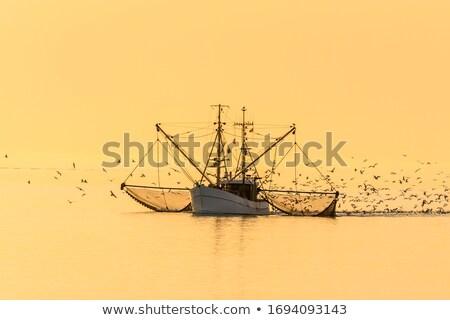 Trawler in the North Sea Stock photo © mobi68