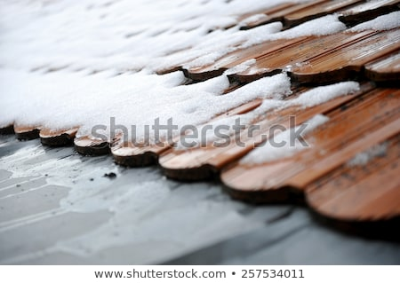 Melting snow on the tile roof. Stock photo © rglinsky77