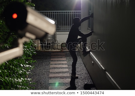 Caught burglar Stock photo © stevanovicigor