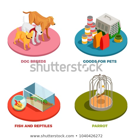 Pet 3D Icons Stock photo © cteconsulting