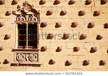 大聖堂 シェル 家 12月 2012 建設 ストックフォト © fxegs