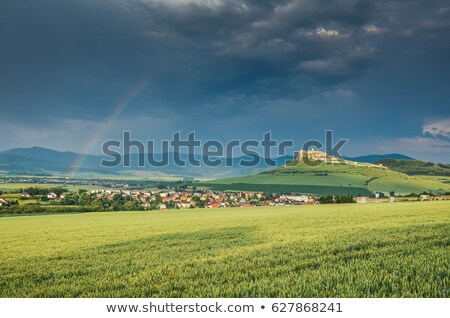 spring flower field with trail to castle tower Stock photo © kikkerdirk