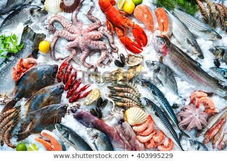 frutos · do · mar · mercado · fresco · peixe · venda - foto stock © 805promo