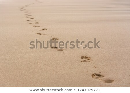 empreinte · sable · Homme · plage · de · sable · homme · nature - photo stock © iko