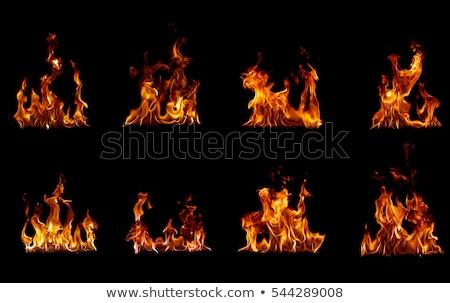 Vreugdevuur collectie brand licht oranje zwarte Stockfoto © Alegria111