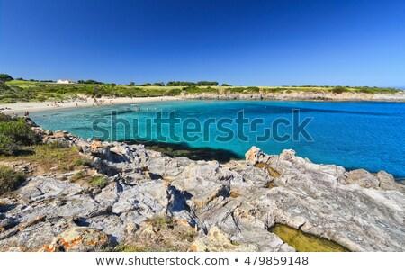 пляж острове воды природы морем Сток-фото © Antonio-S