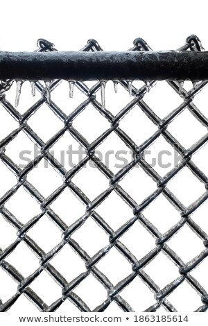 Ice coated chain link fence from an ice storm Stock photo © gabes1976