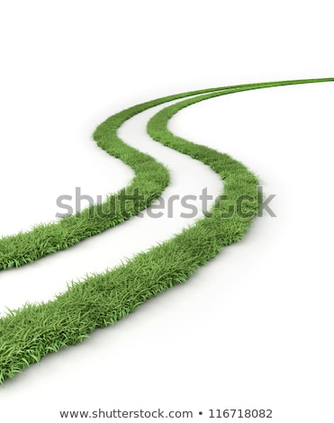 marks of wheels in green field stock photo © meinzahn