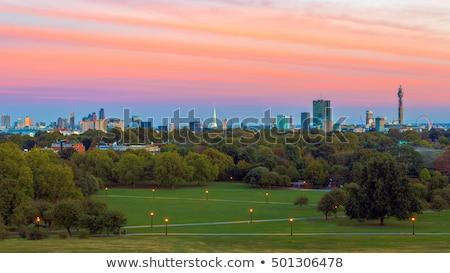 Prímula colina Londres parque inglaterra árvores Foto stock © claudiodivizia