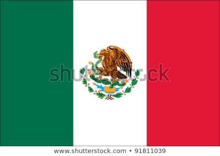 adelaar · vlag · gedetailleerd · illustratie · kaal · silhouet - stockfoto © nezezon