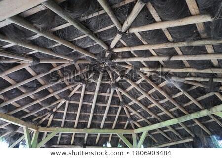 Munkás javít bambusz tető Indonézia 24 Stock fotó © meinzahn