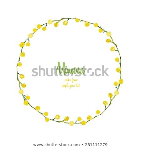 желтый · белый · Полевые · цветы · изображение · солнце · облака - Сток-фото © ottoduplessis