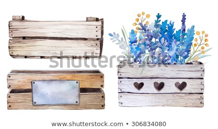 cesta · lavanda · buquê · roxo · flores - foto stock © peterhermesfurian