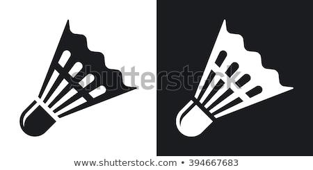 Two badminton shuttlecock Stock photo © Cipariss