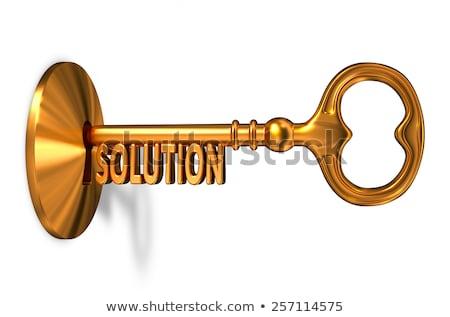 Analysis - Golden Key is Inserted into the Keyhole. Stock photo © tashatuvango