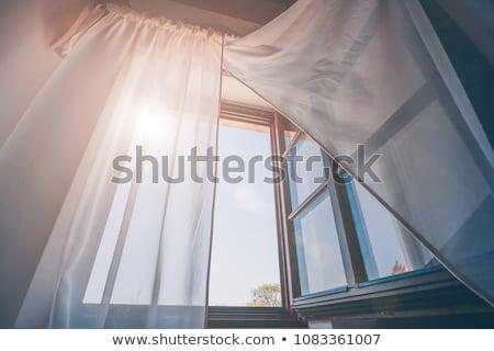 Abrir janela retro isolado branco parede de tijolos Foto stock © MichaelVorobiev