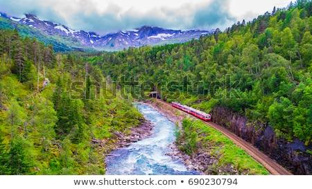 Noruega tren movimiento rápidamente montanas naturaleza Foto stock © bezikus