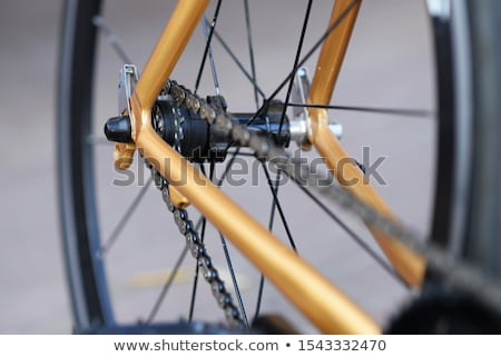 close up of a bicycle rear wheel with details stock photo © ziprashantzi