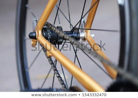 Bicicleta roda detalhes cadeia Foto stock © ziprashantzi