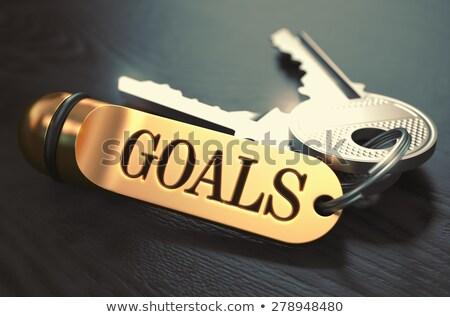 purpose   bunch of keys with text on golden keychain stock photo © tashatuvango