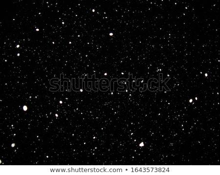 ártico · nevasca · longe · norte · oceano · ilustração - foto stock © x7vector