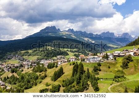 view over the meadows in the dolomite alpes, near village Vigo Stock photo © meinzahn