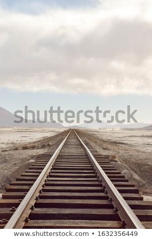railway in desert landscape bolivia stock photo © meinzahn