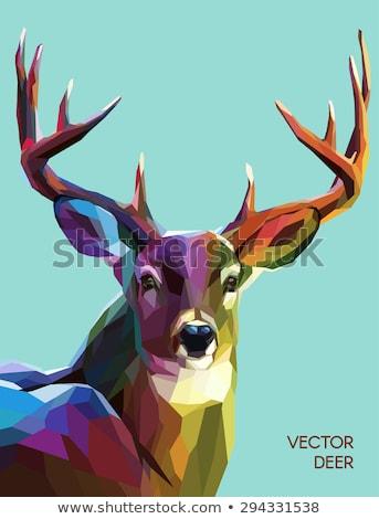 Natal ilustração cor veado baixo silhueta Foto stock © -Baks-