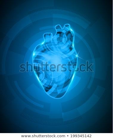Coração mecanismo belo profundo azul cor Foto stock © Tefi
