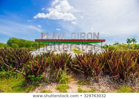 On the beach Playa Giron, Cuba.  Stock photo © CaptureLight
