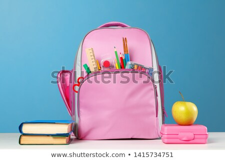 Lunchbox roze kleur illustratie achtergrond kunst Stockfoto © bluering