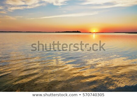 Landscape of sunset at lake with reeds Stock photo © LoopAll