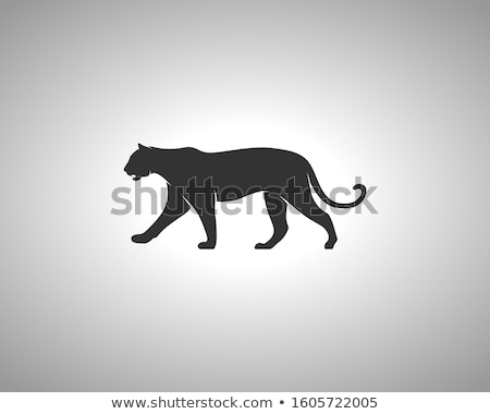 tiger black icon silhouette symbol of tiger isolated on white background wild animal pictogram for stock photo © jeksongraphics