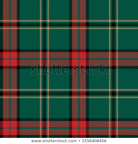 Green tartan plaid fabric pattern background stock photo © myfh88