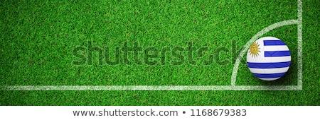 футбола Уругвай цветы зеленый текстуры Футбол Сток-фото © wavebreak_media