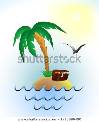 Karikatur Insel Palmen Schatztruhe Illustration Wasser Stock foto © bennerdesign