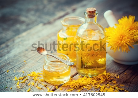 medicinal dandelion with essential oil stock photo © bdspn