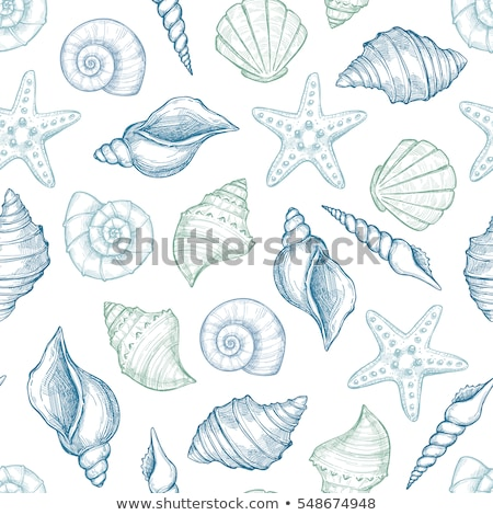 Seamless pattern with hand drawn seashells and starfishes Stock photo © lemony
