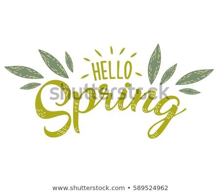 Hello tavasz szalag gradiens háló virágok Stock fotó © adamson